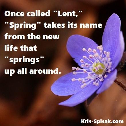 Origin of Spring