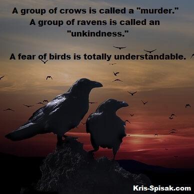 Murder-Unkindness-Birds